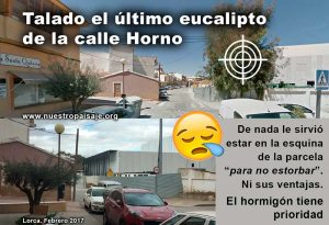 Calle-HORNO-composwb